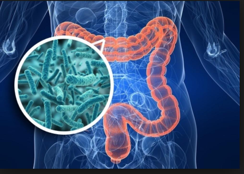Programma Microbioma